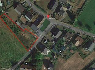 Deze grond van 13a80 heeft een straatbreedte van meer dan 29m !! Hierop kan een woning gebouwd worden van 9,1 m breed en 12m diep (zie plannen). Daarn