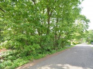 Mooi gelegen villagrond voor open bebouwing met West tuin op een perceel van 12a09ca in een groen, bosrijke omgeving.  Bouw hier uw droomwoning met ee