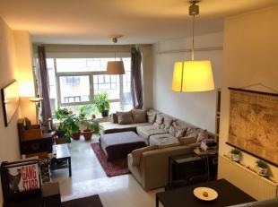 Trendy en ruim instapklaar DUPLEXappartement met terras.<br /> leefruimte, keuken, 2 toiletten, badkamer met ligbad/douche<br /> ruim terras <br /> <b