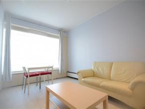 A louer studio tout confort entièrement meublé comprenant séjour avec canapé, meuble TV, table basse, cuisine équip