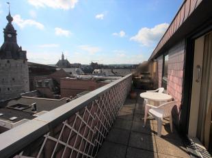 Agréable appartement dans la Seigneurie de standing Jardin d'Harscamp au 5ème étage, située au cur du centre ville, proche