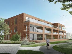 Op het domein van een karaktervol landhuis hebben we een apart stedenbouwkundig concept ontwikkeld. Het centrale landhuis met zijn prachtige parktuin