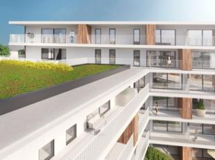 Fase III is het spiegelbeeld van de tweede fase waardoor deze terrassen zuidwest gericht zijn. De Smedenpoort is stilaan een begrip geworden in Aalter