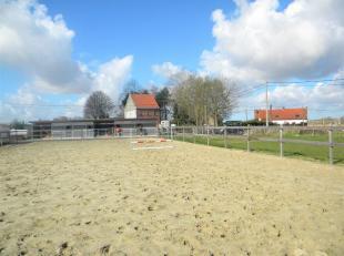 In Roesbrugge-Haringe (deelgemeente Poperinge) bevindt zich op uiterst landelijke ligging dit stuk grond. Deze weiland heeft een oppervlakte van 1ha 0