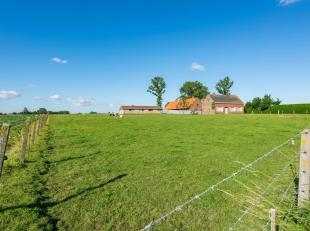 In het landelijke dorp Houthulst, op het centrale punt tussen Roeselare-Ieper-Diksmuide, huisvest ditfantastisch landhuismet schuur en koeienstallen.