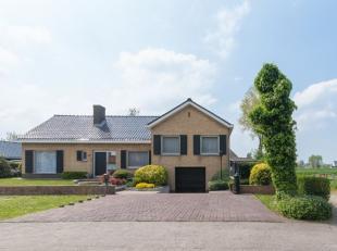 Deze stijlvolle villa is gelegen in een rustige, residentiële buurt te Gistel. Het kloppend hart ligt op wandelafstand. Scholen, horeca, handelsz