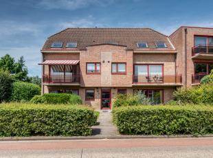 Dit appartement met 3 slaapkamers en uitzonderlijk ruim terras van 50 M2 is centraal gelegen, tussen Hoevenen, Kapellen en Ekeren op een steenworp van