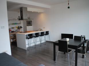 Het appartement bevindt zich op wandelafstand van het eilandje, het centrum van Antwerpen, Park Spoor Noord en de Universiteit Antwerpen. In de nabijh
