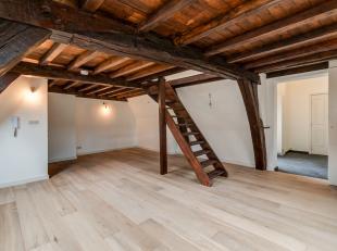 Nieuw gerenoveerd instapklaar 1-slaapkamerappartement 70 m² met terras van 4 m² op de 3e verdieping van een prachtig historisch pand in het