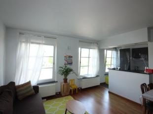 Quartier Sainte-Catherine - Appartement 1 chambre de +/- 55m² très lumineux entièrement rénové situé en plein