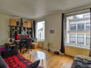 Quartier Dansaert / Halles Saint-Géry : En plein coeur de Bruxelles - Beau studio meublé 30m² - Il comprend un hall d'entrée