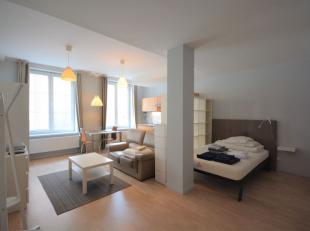 Quartier du Theatre Flamand - Dans un immeuble entièrement remis à neuf - Très beau studio de +/-40M²  - Proximité de