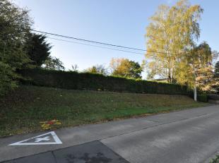 Ce très beau terrain de presque 10 ares est magnifiquement entretenu et propose un accès à deux rues.  Ce quartier du village de