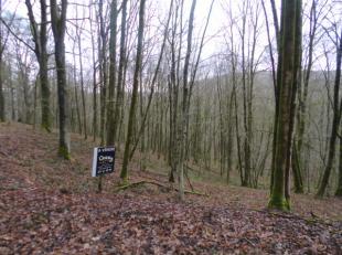 Terrain de 1 hectare 14 ares 72ca (+/- 62m de façade) situé dans un endroit calme et champêtre à proximité des Barra