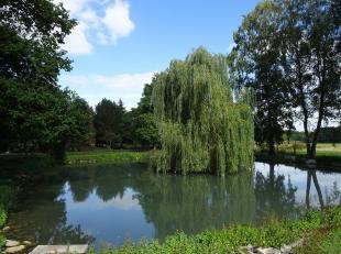 Magnifique terrain à bâtir avec étang sis à proximité du centre de Beauraing.<br /> Celui-ci bénéficie