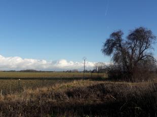 Beau terrain à bâtir (habitat à caractère rural, bureau/commerce) en limite de la grande plaine champêtre de Frocourt