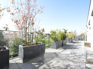 Jardin du Roi/ Louise, dans un bel immeuble neuf de haut standing (Herpain) superbe penthouse de +/- 195 m² au 5ème étage avec deux