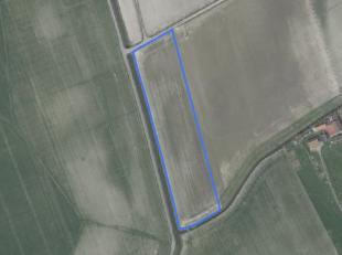 Mooi perceel akkerland (1 ha 38 are 36 ca) gelegen aan de Debarkestraat<br /> <br /> Vrij van pacht