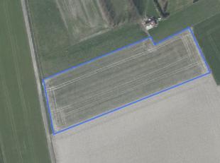 Nabij centrum Bulskamp gelegen perceel akkerland te koop (91 are 36 ca) aan de Beauvoordestraat<br /> <br /> Vrij van pacht