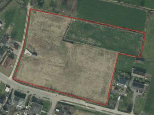 Mooie blok aan straat gelegen landbouwgrond te koop te Waarschoot<br /> <br /> Oppervlakte : 1 ha 63<br /> <br /> Vrij van pacht