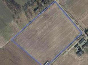 Blok van 5 ha 93 are 04 ca akkerland te koop te Weelde<br /> Aan straat gelegen<br /> Mooie vierkante blok<br /> Vrij van pacht