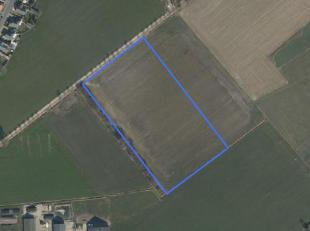 Mooie rechthoekige blok akkerland, oppervlakte : 2 ha 21 are 96 ca.<br /> Vrij van pacht