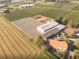 Hoeve met mooie loodsen en omliggende gronden te koop te Ranst (Broechem)<br /> <br /> Zeer centraal gelegen nabij Antwerpen en vlot bereikbaar via E3