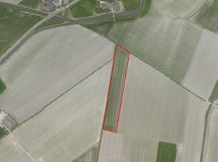 Mooi rechthoekig perceel akkerland van 1 ha 82 are te koop te Knokke<br /> <br /> Vrij van pacht