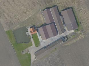 Zeer verzorgd varkensbedrijf te koop te Alveringem (Hoogstade)<br /> <br /> Bestaande uit :<br /> <br /> Recent vernieuwde bedrijfswoning<br /> NIeuwe