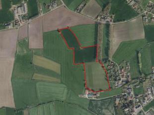 Landbouwgrond te koop te Maldegem<br /> <br /> 3 ha 87 are 60 ca<br /> <br /> Vrij van pacht, te gebruiken na oogst lopende teeltjaar