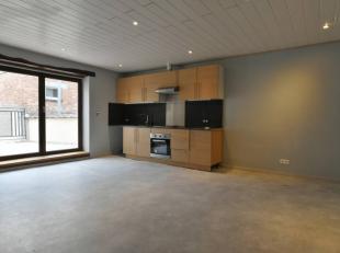 Prix: 550 euros, deux mois de caution.Grand duplex en très bon état, habitable directement et comprenant:Rez: Hall d'entrée.Etage