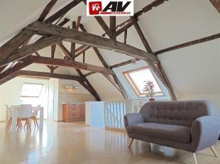 Très beau studio/loft au pied de la cathédrale de Tournai au dernier étage. Grand et lumineux séjour avec de grands espace