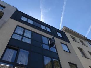 Appartement  in het hartje van stad Antwerpen met 2 slaapkamers, een grote woonkamer met open keuken (met frigo, elektrisch vuur, oven en vaatwasser),