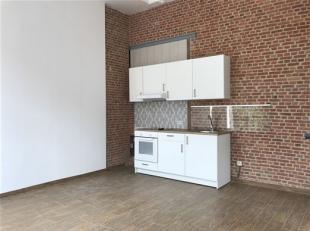 Volledig gerenoveerd 1slaapkamer appartement vlakbij het centrum! Dit lichte appartement heeft een woonkamer met open, geïnstalleerde keuken, 1 s