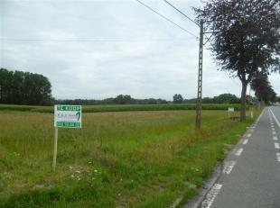 Terrain à vendre                     à 9450 Denderhoutem