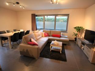 Dit nieuwbouwappartement is gelegen op het Dorp van Erembodegem.<br /> Het gelijkvloerse appartement beschikt over een ruime leefruimte met open geins