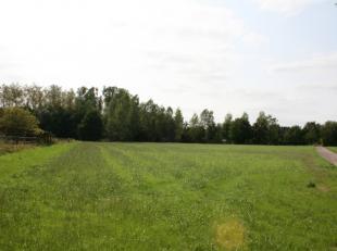 LANDBOUWGROND met een oppervlakte van 1 ha 56a 20 ca.<br /> Deze grond ligt dicht bij De Laak, is makkelijk bereikbaar en is<br /> geschikt voor het t