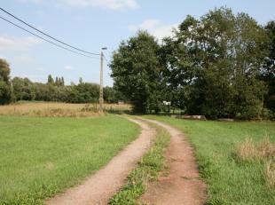 LANDBOUWGROND met een oppervlakte van +/- 1 ha.<br /> Deze grond ligt dicht bij De Laak , is gemakkelijk bereikbaar en uiterst geschikt<br /> voor het