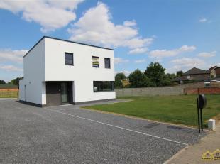 Maison à louer                     à 3700 Sluizen