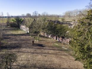 Historische hoeve op een unieke ligging midden een open landschap. <br /> Landelijke en natuurrijke omgeving met typische landschapselementen: bolle a