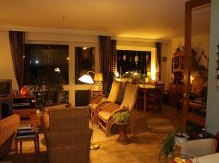 Rustig gelegen appartementje in hartje Schoot (Tessenderlo) op wandelafstand van de Gerhaagse bossen!De indeling is al volgt: inkomhalopen keuken met