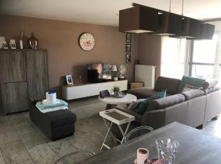 Appartement met zonneterras op 1e verdiep te Maasmechelen (Meeswijk): Te bezichtigen, mits een afspraak met Ronny 0472 901929. Het appartement komt op
