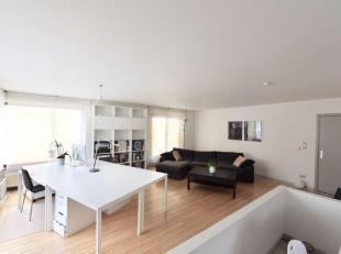 Rustig gelegen appartement 1 ste verdiep. Geen directe buren. Enkel boven op burelen van de verfhandel Ramaekers Hasselt.  Vrij vanaf 1 juli 2019 . Be