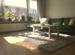 Volledig gerenoveerd appartement met twee slaapkamers en terras gelegen aan de rand van Antwerpen centrum nabij het Albertpark, binnen de singel.<br /