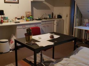 Mooie kamer met eigen kitchinette en badkamertje met douche, lavabo en wc. De kamer is voorzien van een eenpersoonsbed, bureau, boekenkast en kleerkas