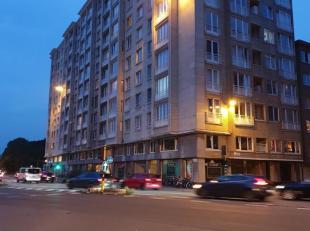 Instapklaar appartement, ideaal gelegen aan het Prins Albertpark, tussen alle grote invalswegen van en naar Antwerpen. Alle grote supermarktketens bev