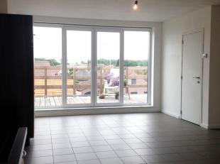 Appartement à vendre                     à 2040 Berendrecht
