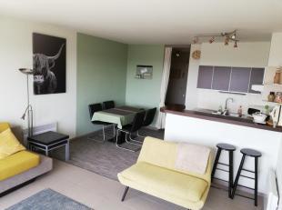 zeer ruime studio met aparte kinderkamer - recent gerenoveerd (2018) - alle modern comfort aanwezig - goed uitgeruste keuken<br /> Gelegen op het 9e v