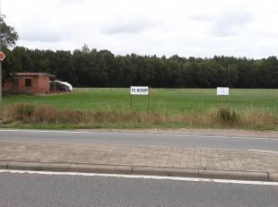 Terrain à vendre                     à 3670 Wijshagen