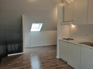 Zeer ruime studio( 1grote ruimte) op 3de verdiep met nieuwe keuken, nieuwe badkamer, nieuw toilet, nieuwe CV ketel, nieuw dak in 2018 en ook volledig